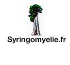 Syringomiélie.fr, association partenaire APAISER, Malformation de Chiari, Syringomyélie