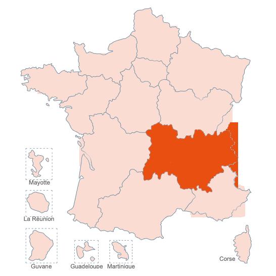 Structures Spécialisées Douleur Chronique, Auvergne Rhone Alpes, APAISER S&C janvier 2021