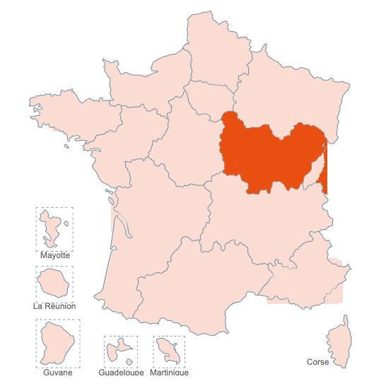 Structures Spécialisées Douleur Chronique, Bourgogne, APAISER S&C janvier 2021