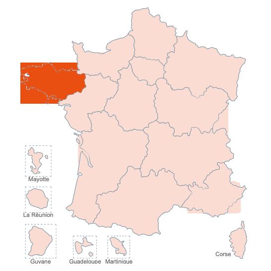 Structures Spécialisées Douleur Chronique, Bretagne, APAISER S&C janvier 2021