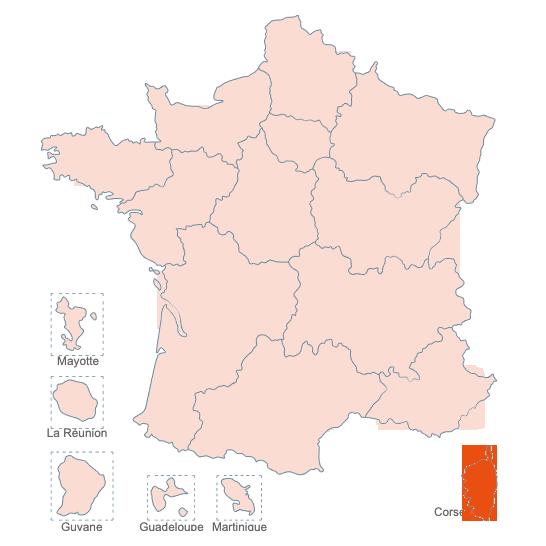 Structures Spécialisées Douleur Chronique, Corse, APAISER S&C janvier 2021