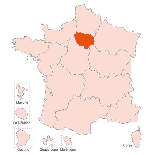 Structures Spécialisées Douleur Chronique, Ile de France, APAISER S&C janvier 2021