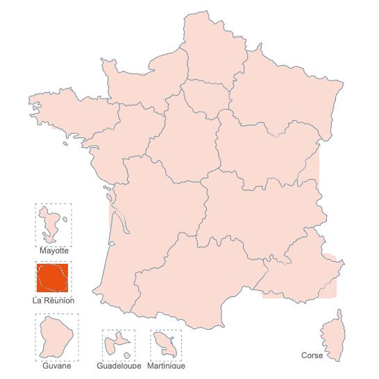 Structures Spécialisées Douleur Chronique, La Réunion, APAISER S&C janvier 2021