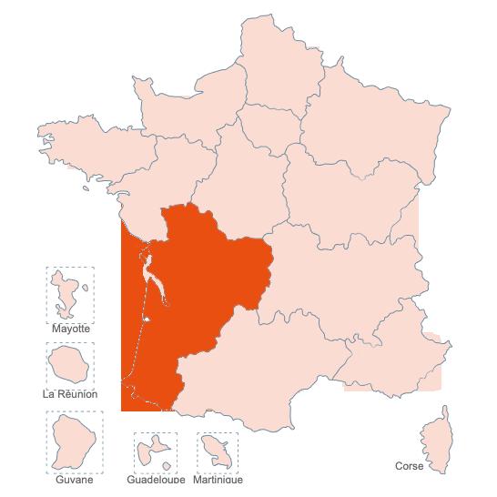 Structures Spécialisées Douleur Chronique, Nouvelle Aquitaine, APAISER S&C janvier 2021
