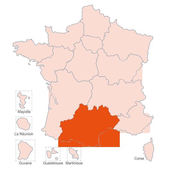 Structures Spécialisées Douleur Chronique, Occitanie, APAISER S&C janvier 2021
