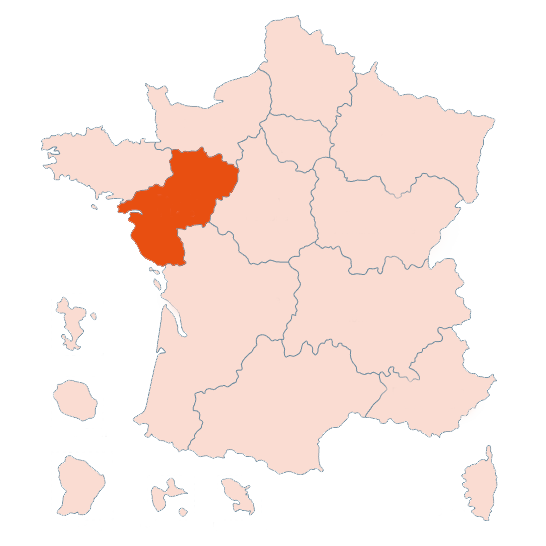 Structures Spécialisées Douleur Chronique, Pays de la Loire, APAISER S&C janvier 2021