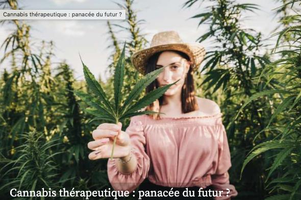 Cannabis thérapeutique, la panacée du futur ?